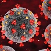 إنتشار فيروس كورونا -٢
