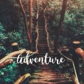 الحياة مغامرة