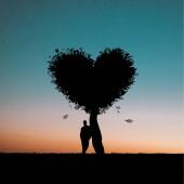 الفرق بين الحب والتعلق