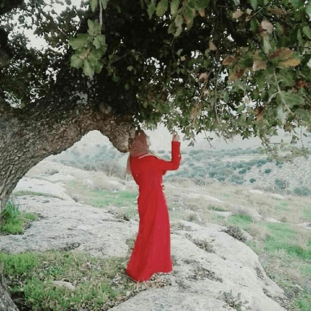 Heba Mohammad